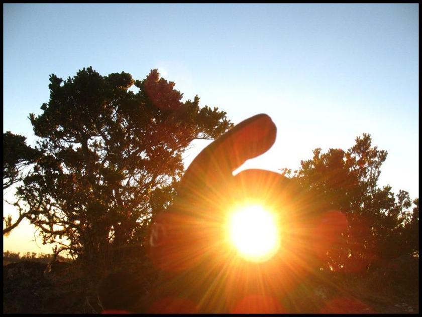 Matahari Rengganis